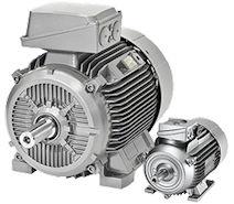 standard motors